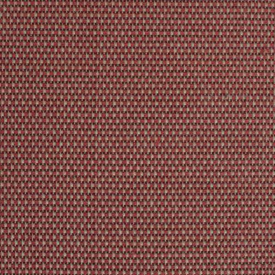 Cervia 01151 Collezione Cesaro